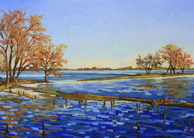 uiterwaard, Margot Maaskant, ooipolder, Nijmegen, landschap, olieverf, winter, water