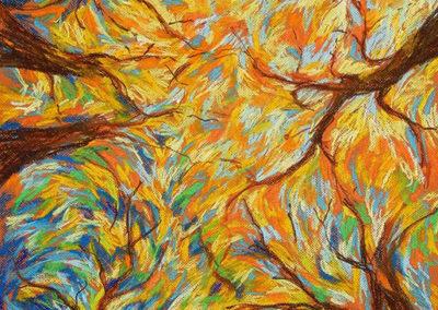 lente, bomen, Margot Maaskant, krijt, tekening, pastelkrijt, kijk omhoog, lucht, licht