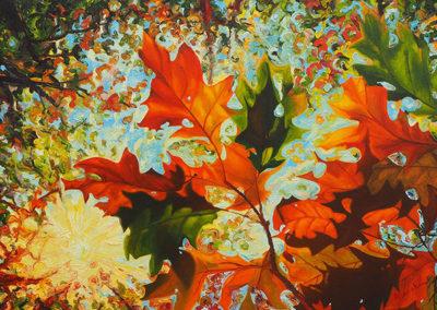 Bladerdak, herfst, zonlicht, bomen, oranje, vrolijk, schilderij, Margot Maaskant
