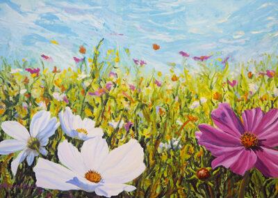 Cosmea, schilderij, margot maaskant, wit, geel, roze, blauw, bloemen, bloemenveld, nederland, landschap
